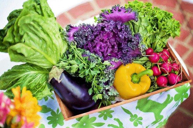 野菜言葉 宅配弁当